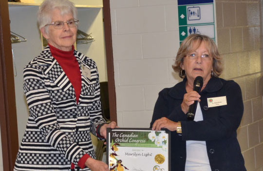 Marilyn Light receives COC award