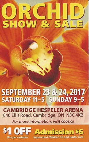 COOS Orchid Show & Sale @ Cambridge Hespeler Arena | Cambridge | Ontario | Canada