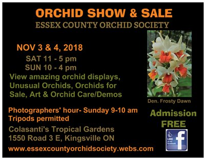 2018 Essex County Orchid Society Show & Sale @ Colasanti's Tropical Gardens | Kingsville | Ontario | Canada