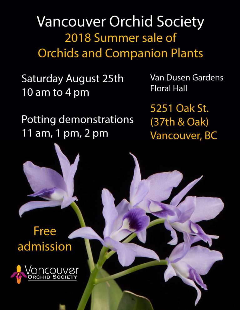 Vancouver Orchid Society 2018 Summer Sale of Orchids and Companion Plants @ Van Dusen Gardens Floral Hall | Vancouver | British Columbia | Canada