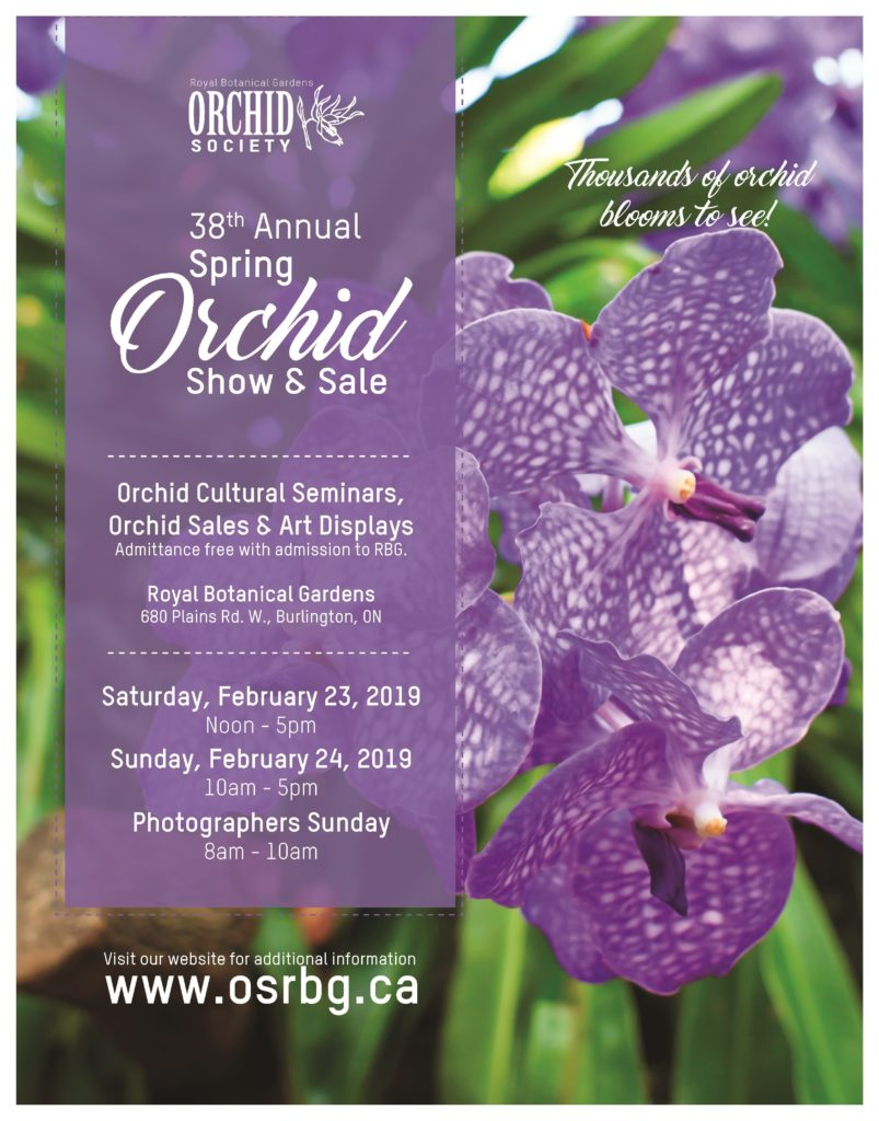Orchid Society of the Royal Botanical Gardens Orchid Show @ Royal Botanical Gardens | Burlington | Ontario | Canada