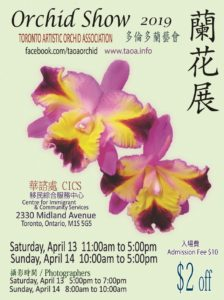 Toronto Artistic Orchid Association - 18th Annual Show @ Ctr for Immigrant & Community Services