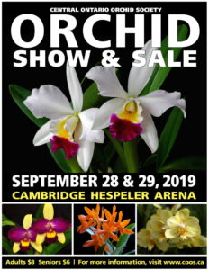 Central Ontario Orchid Society Show & Sale @ Cambridge Hespeler Arena