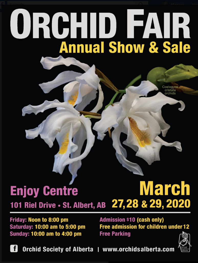 Orchid Society of Alberta: Orchid Fair, Annual Show & Sale - CANCELLED @ Enjoy Centre